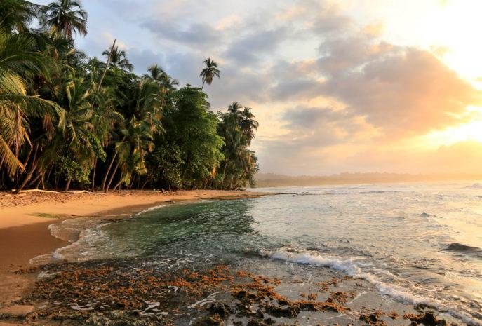 Beautiful beach in Manzanillo, Costa Rica (Caribbean Sea)