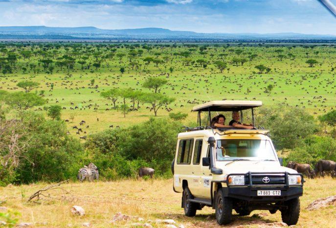 Viajes de Lujo a africa