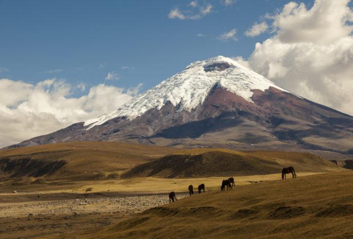 Viaje de lujo a Ecuador